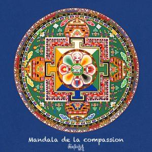 autocollant-15x15-compassion-copie